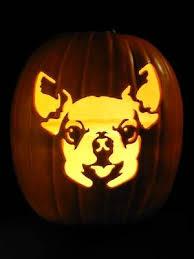 Boston Terrier Pumpkin Pattern by Dog Face Pumpkin Patterns Patterns Kid