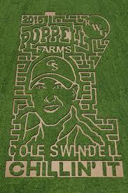Pumpkin Patch Columbia Sc 2015 by Southern Mamas Poppell Farms Pumpkin Patch Corn Maze 2015