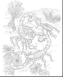 Wonderful Desert Animals Coloring Pages With And Landscape
