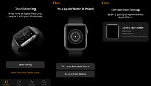 How to Backup Wipe and Restore Your Apple Watch