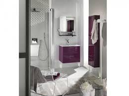 salle de bain mauve décoration salle de bain mauve