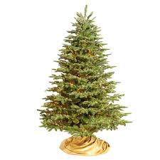Grand Noble Christmas Tree With Traditional Stand