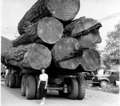 Morton WA 1950's | Old Logging | Pinterest | Trucks, Logging ... Gordon Trucking Pacific Wa Beverage Trucks Pinterest Christian Jobs Modesto Gear Jammer Gazette Gardner Company Wwwtopsimagescom Powertorque Issue 77 Nejuly 2017 By Motoring Matters Magazine Teamsters Local 355 News West Coast Collaborative Meeting Documents Moving Truck Rentals Budget Rental Trucking Inc Youtube A Foresttoproduct Biomass Supply Chain In The Northwest Details Western Star Wins State Association Awards For Safety