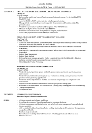 Download Solutions Product Manager Resume Sample As Image File