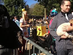 Tompkins Square Park Halloween Dog Parade Winner by A Soy Bean Tricks U0026 Vegan Treats And The Tompkins Square Park