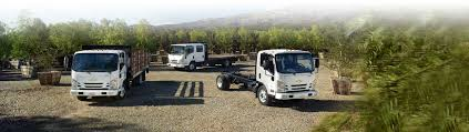 Add The Chameleon Of Commercial Vehicles To Your Small Business ...