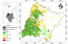 Define Carbon Sink Geography by López Serrano Pm López Sánchez Ca Díaz Varela Ra Corral Rivas