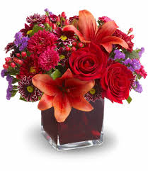 Teleflora's Autumn Grace In Daytona Beach, FL | Zahn's Flowers & More Save 50 On Valentines Day Flowers From Teleflora Saloncom Ticwatch E Promo Code Coupon Fraud Cviction Discount Park And Fly Ronto Asda Groceries Beautiful August 2018 Deals Macy S Online Coupon Codes January 2019 H P Promotional Vouchers Promo Codes October Times Scare Nyc Luxury Watches Hong Kong Chatelles Splice Discount Telefloras Fall Fantasia In High Point Nc Llanes Flower Shop Llc