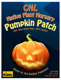 Pumpkin Patch Sf by Pumpkin Patch At Cnl Nursery Kiddo