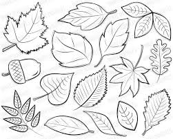 Autumn Leaves Digital Stamps Clipart black by InkeeDoodles · Fall Leaves DrawingDraw