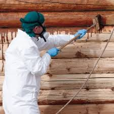 How to Stain a Log Home