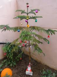 Pickle On Christmas Tree Myth by Keep Smiling December 2016
