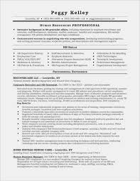 Recruiter Resume Sample Unique Resume Professional Summary Examples ... Sample Curriculum Vitae For Legal Professionals New Resume Year 10 Work Experience Professional Summary Example Digitalprotscom Customer Service 2019 Examples Guide View 30 Samples Of Rumes By Industry Level How To Write A On Of Qualifications Fresh For Best Perfect Retail Included Unique Atclgrain Free Career Smaryume Manager Teachers