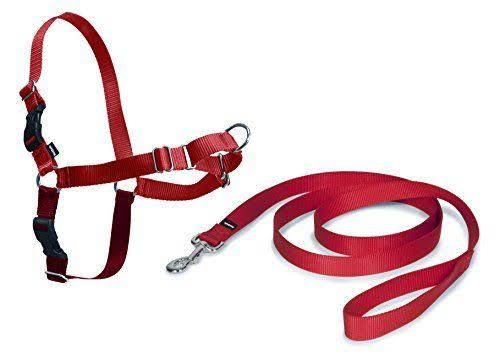 Petsafe Easy Walk Harness - Red, Medium/Large