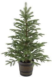 Popular Artificial Silver Tip Christmas Tree by Best 25 Small Artificial Christmas Trees Ideas On Pinterest