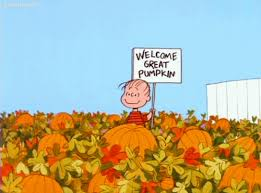 Chatham Kent Pumpkin Patches by Fall Date Ideas Her Campus