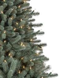 Black Slim Christmas Tree Pre Lit by Bh Blue Spruce Flip Tree Balsam Hill