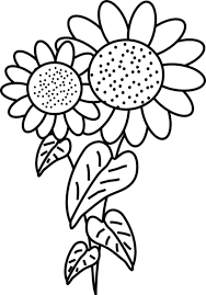 Sunflower Coloring Pages Fancy Page Simple