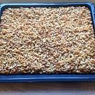 schneller kuchen thermomix rezepte chefkoch