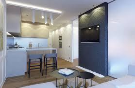 100 500 Square Foot Apartment Eugene Meshcheruk Designs Cozy 5
