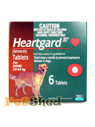 heartgard for cats petshed petcyclopedia all about heartgard for dogs