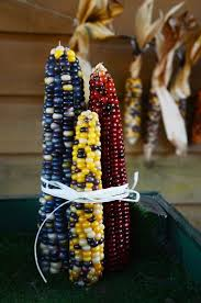 1293 Best Indian Corn Images On Pinterest   Fruit, Pink Popcorn ... Prettiest Popcorn I Ever Did Grow The Unfettered Fox Glass Gem Corn Littlegirlstory Glass Gem Corn The Cover Of Our Whole Seed Catalog Carls Flint Is An Unbelievably Stunning Bred By Part Hdenosaunee The Iroquois Confederacy Tuscarora White Oliveloaf Design Afbeeldingsresultaat Voor Peru Brazil Colored Pinterest 9 Best Sweetcorn Images On Color 2 Cob And Maze Story Behind Business Insider 1293 Indian Fruit Pink Popcorn