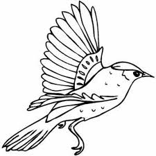 Flying Bird Coloring Pages Clipart Best