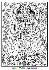 Free Printable Basset Hound Coloring Page Available For Download Simple And Detailed Versions Adults