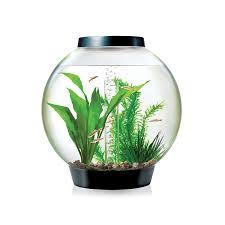 Petco Flower Ball Aquarium Decor by Amazon Com Biorb Classic 15 Aquarium With Led Light 4 Gallon