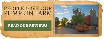 Pumpkin Farm Illinois Best by Pumpkin Patch Chicago Be Prepared For Thanksgiving With These Tips