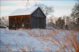 """Old Barn In The Snow"""" A Pretty Old Barn The Bookshelf Of Emily J Kristen Hess Art Rustic Shed Free Stock Photo Public Domain Pictures Usa California Bodie Barn On Plains Royalty Images Wood Vintage Building Old Home Country Wallpapers Pack 91 44 Barns And Folks Maxis Comments Vlad Konov August Grove Ryegate Rainy Day 3 Piece Pating Print Overgrown Warwickshire England Picture Renovation Inhabitat Green Design Innovation Farm Buildings Click Here For A Larger View"""