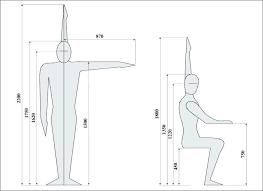 hauteur assise canapé hauteur assise canape stature hauteur dassise canape efunk info