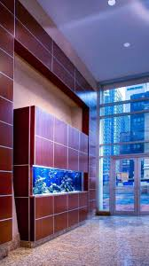 The 25+ Best Home Aquarium Ideas On Pinterest | Fish Tank Cleaning ... Amazing Aquarium Designs For Your Comfortable Home Interior Plan 20 Design Ideas For House Goadesigncom Beautiful And Awesome Aquariums Cuisine Small See Here Styfisher Best Stands Something Other Than Wood Archive How To In Photo Good Depot Kitchen Cabinet Sale 12 To Home Aquarium Custom Bespoke Designer Fish Tanks Perfect Modern Living Room Lighting 69 On Great Remodeling Office 83 Design Simple Trending Colors X12 Tiles Bathroom 90