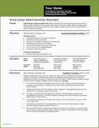 Sample Resume Profile Administrative Assistant Examples New Template