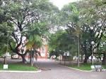 imagem de Turvo Santa Catarina n-23
