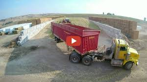 Corn Silage Packing Time Lapse Case And John Deere.. B3 Farms Corn ... Grain Silage Trucks For Sale Corn Silage Packing Time Lapse Case And John Deere B3 Farms Truck Driver Life On The Ranch Collins Family Silage Cy Harvesting 1976 Mack R600 Grain Farm Truck For Sale Auction Or Lease Intertional Wrecker Tow Trucks N Trailer Magazine 2006 Intertional Eagle 9200i Truck Item Dx9084 Oat Harvest 2013 What Goes Around Comes Mgaret Duarte Desert Survivor Bagging