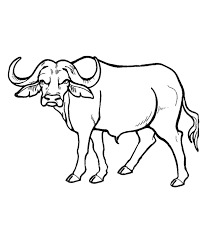 African Animal Template
