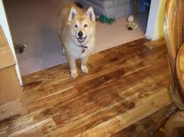 Tobacco Road Acacia Engineered Hardwood Flooring by Adorable Animals