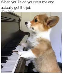 250+ Dankest Corgi Memes | #MemeGodCertified |Doggypedia Should You Fess Up To Your Boss Or Hr If Lied On The Top 5 Reasons You Cant Lie On Your Resume Talentegg Catching Lies In The Hiring Process What Happens When Palmer Group Dont Lie Cv Untrue Credentials Can Land A Can Get Away With Lying Ulearning Inglish Resume 3 Ways Proceed When Lied Wikihow Steve Blank