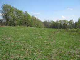 land for sale 18 acres near summerhill ny property images