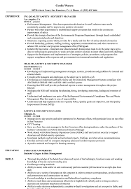 Download Safety Security Manager Resume Sample As Image File