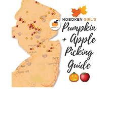 Best Pumpkin Picking Bergen County Nj by 7 New Jersey Apple Orchards U0026 Pumpkin Patches Near Hoboken And