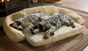 large dog beds deluxe deep dish dog bed orvis uk