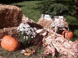 Pumpkin Factory Belleville Mi by A St Louis Realtor U0027s Adventures Tips And Finds September 2010