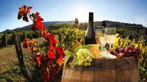 About Us Tours Scenic Wine Tour Of Chianti
