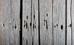 Vintage Barn Wood Texture Background Stock Photo, Picture And ... Old Wood Texture Rerche Google Textures Wood Pinterest Distressed Barn Texture Image Photo Bigstock Utestingcimedyeaoldbarnwoodplanks Barnwood Yahoo Search Resultscolor Example Knudsengriffith The Barnwood Farmreclaimed Is Our Forte Free Images Floor Closeup Weathered Plank Vertical Wooden Wall Planking Weathered Of Old Stock I2138084 At Photograph I1055879 Featurepics Photos Alamy