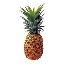 Image for Pineapple Tumblr Transparent Food