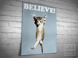 THE BELIEVE CAT Mesh Poster With Peeling Off The Wall Corner