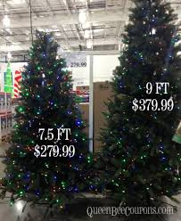 Costco Christmas Trees Decorations Lights 2013 In