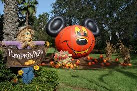 Pumpkin Patch Orlando Area by Pumpkin Patch At Downtown Disney Kennythepirate Com
